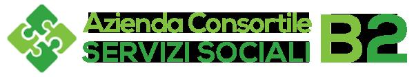 azienda consortile servizi sociali B2